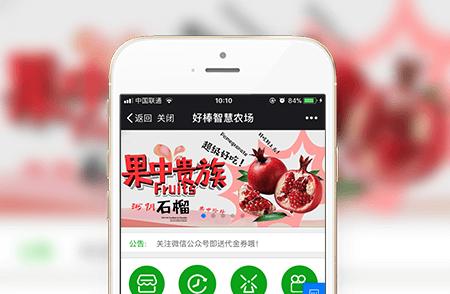 农场农业商城微信开发案例